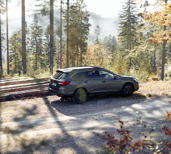 sports subaru car in the forest